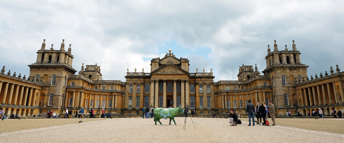 Capability Brown cow at Blenheim Palace